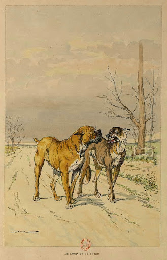 loup et chien